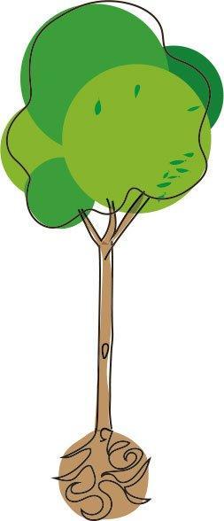 Es ist nicht getan damit, einen Baumsetzling einfach im Garten einzugraben.