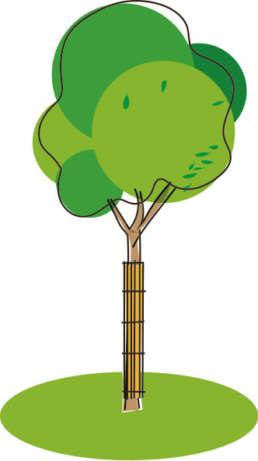 Bäume pflanzen und schneiden will gelernt sein