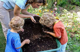 Kompostieren macht Sinn!