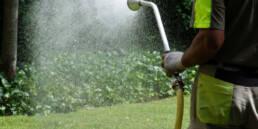 Richtig Wässern: Wasser sparen