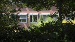 Biodiversität zwischen Häuserfronten